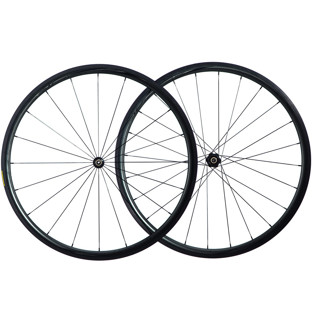 Forza Cirrus Pro C30 - DT Swiss 350s Hubs Carbon Road Wheelset