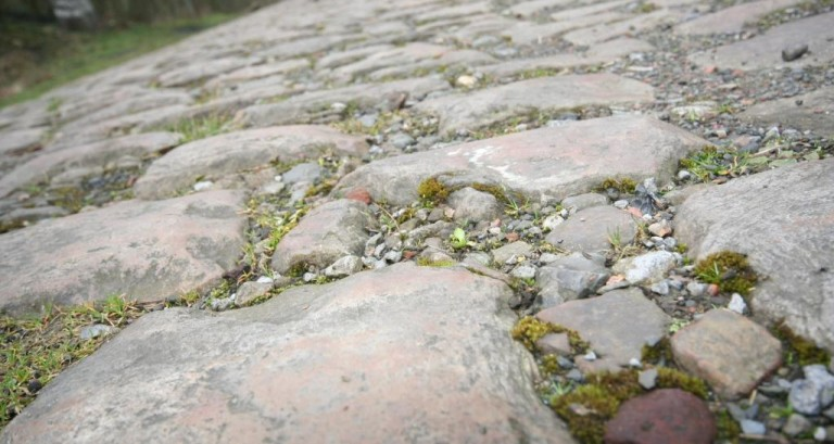 Paris-Roubaix Cobbles