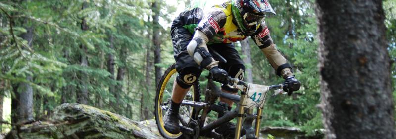 mountain-lion-bike-downhill-1273969
