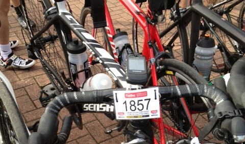 sportive number