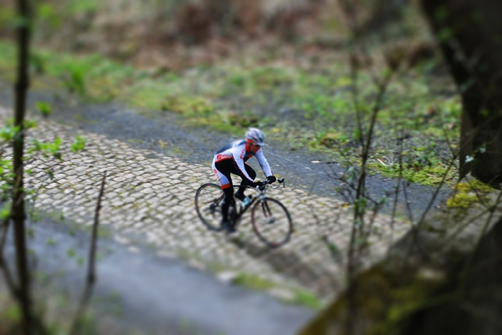 Arenberg toy like