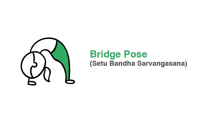 bridge-pose