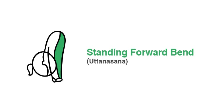 standing-forward-bend