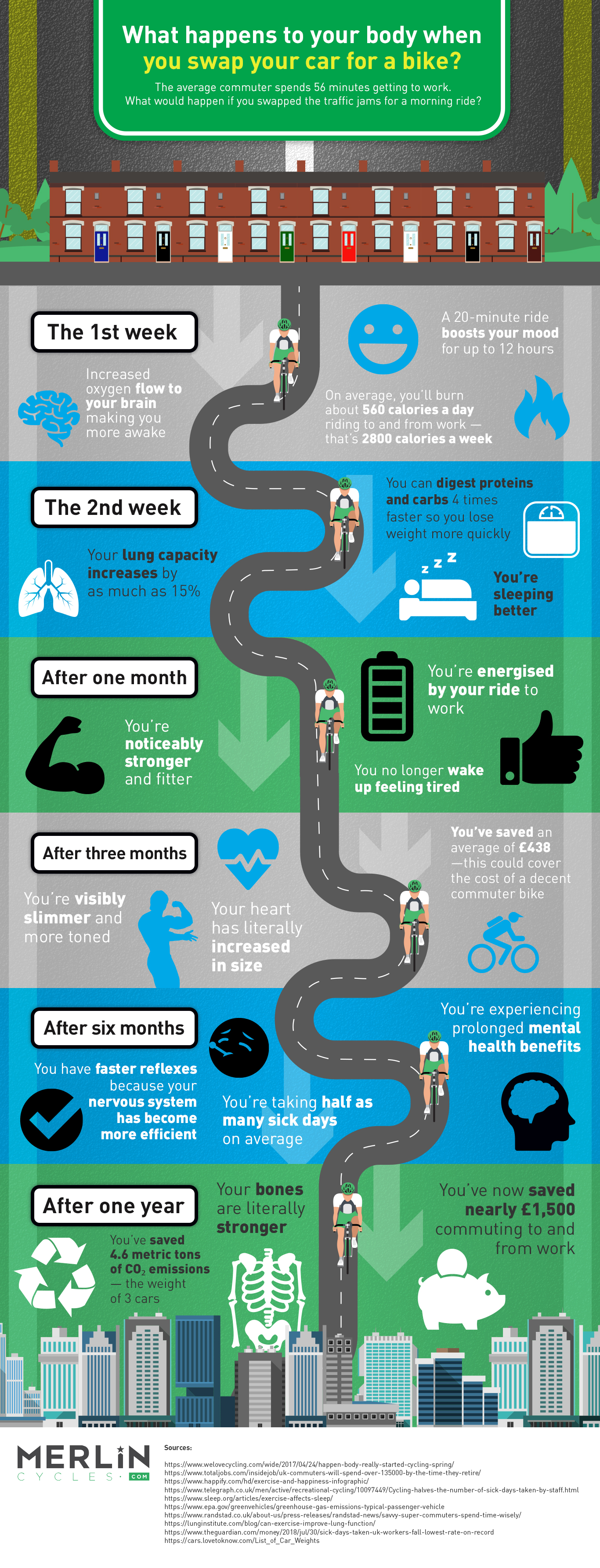 Infographic for Merlin Cycles that shows what happens to your body when you swap your car for a bike