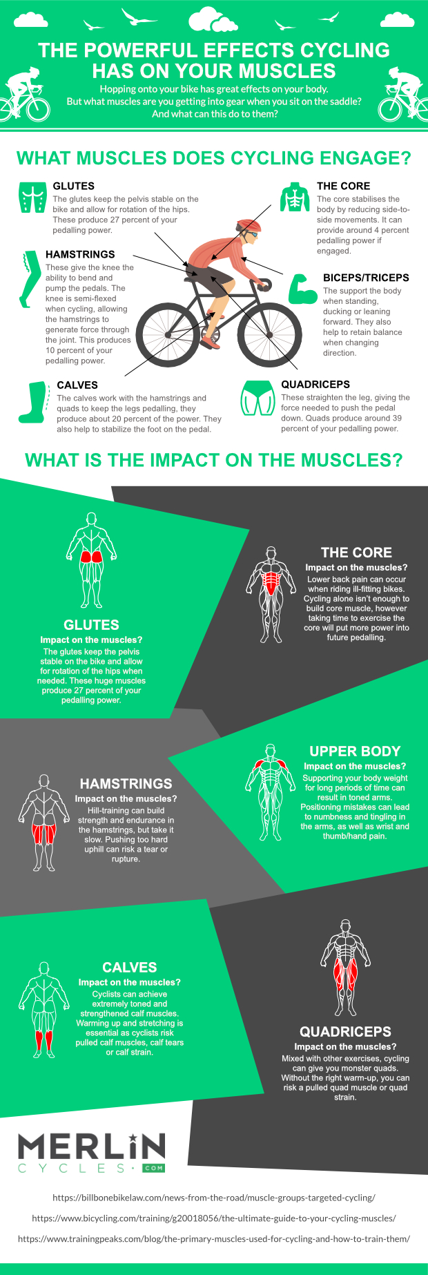 Infographic showing cycling's impact on the muscles