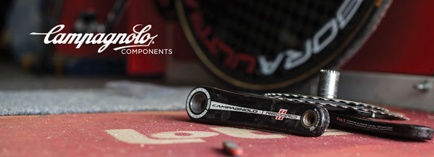 campag_search_banner