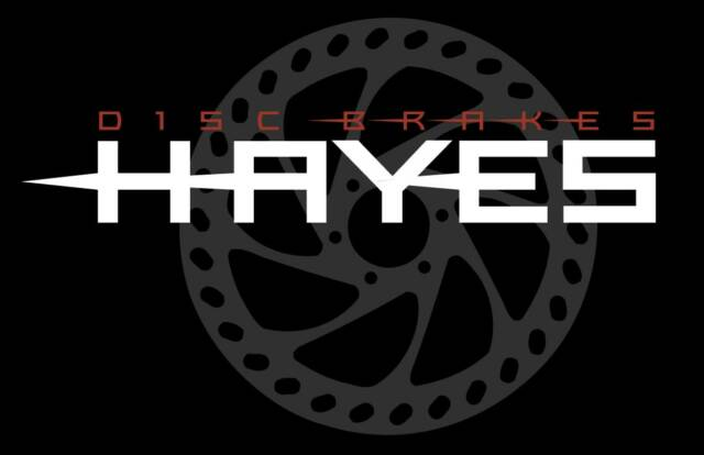 Znalezione obrazy dla zapytania hayes logo
